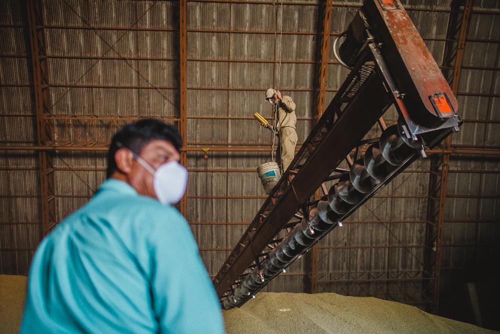Renta de Bodegas para almacenaje de granos.