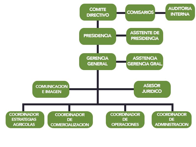 AARC-ORGANIGRAMA